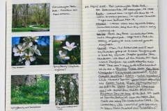 spring-nature-journal-page_4062741510_o