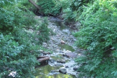 tacony-creek-tributary_4737302472_o